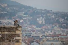 Budapest Royalty Free Stock Photography