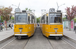 Budapest trams Royalty Free Stock Images