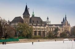 BUDAPEST, UNGARN - 17. DEZEMBER 2017: Das Vajdahunyad-Schloss und die Eisbahn der Stadt parken auf Ungarisch: Varosliget sind Lizenzfreie Stockfotos