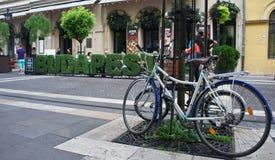 Budapest Ungern - 15 07 2015: Cykel och kafé i den Zrinyi Utca gatan royaltyfria foton