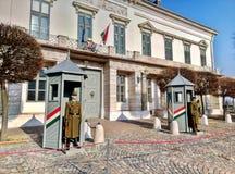 Budapest/Ungern - Februari 12 2017: Beväpnad Budapest presidents- vakt arkivbilder