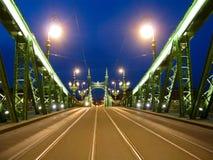 Budapest Ungern, frihetbro, nattplats royaltyfri foto