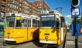 Budapest Ungern - 15 07 2015: Gul spårvagn i gatan royaltyfria foton