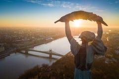 Budapest, Ungheria - alba aerea alla statua della libertà con Liberty Bridge Fotografie Stock