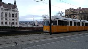 BUDAPEST, UNGHERIA GENNAIO 2019: Numero due famoso della linea tranviaria a Budapest che va al Parlamento video d archivio
