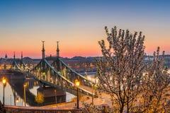 Budapest, Węgry - Panoramiczny linia horyzontu widok Budapest przy wiosna czasem od Gellert wzgórza z czereśniowym okwitnięciem i Fotografia Royalty Free