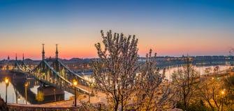 Budapest, Węgry - Panoramiczny linia horyzontu widok Budapest przy wiosna czasem strzelał od Gellert wzgórza z czereśniowym okwit Zdjęcia Royalty Free