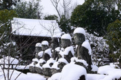Budas cobertos de neve, Kyoto Japão Fotos de Stock Royalty Free