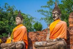 Budas no templo de Wat Yai Chai Mongkol em Ayutthaya Imagem de Stock