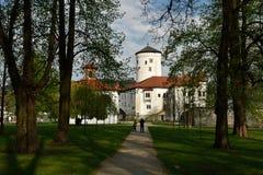 Budatin Castle, Slovakia Royalty Free Stock Photos