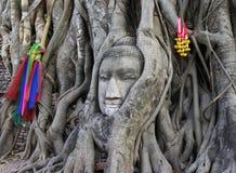 Budda Lizenzfreies Stockfoto