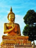 Budda Stock Afbeelding