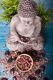budda medytować Obraz Stock