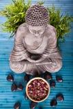 budda medytować Obrazy Stock