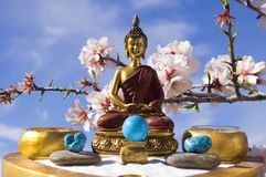 budda ogrodu medytacji zen. zdjęcia stock