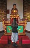 budda pray Zdjęcie Royalty Free