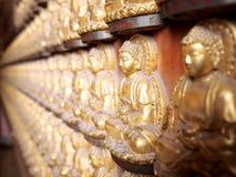 Budda`s relic Royalty Free Stock Photography