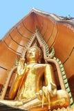 Budda sitting in bothi leave royalty free stock photos