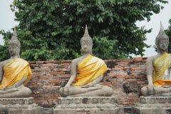 Budda-Statuen bei Wat Yai Chai Mongkon Stockbild