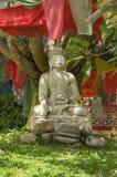Buddah雕象  库存图片