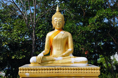 Buddah Royalty Free Stock Photos