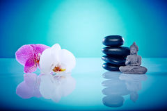 Buddah avec des orchis roses et blancs Images libres de droits