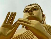 Buddah di Dambulla Immagine Stock Libera da Diritti