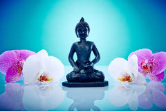 Buddah with pink and white orchis Stock Photography
