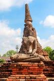 Buddahstandbeeld en Chedi van Wat Chaiwatthanaram Stock Foto
