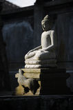 Buddha. Statue embraced by evening light royalty free stock photo