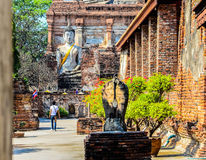 buddha Obraz Stock