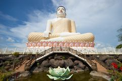 Buddha. A Buddha statue in Sri Lanka Royalty Free Stock Photos