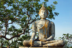 Buddha. Statue from Thailand Stock Image