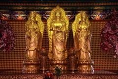 Buddha 3 Arkivfoton