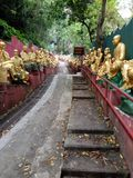 10.000 Buddha Royaltyfri Fotografi
