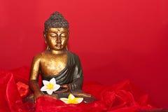 Buddha-Abbildung Stockbild