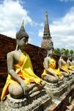The Buddha aligned at Ayutthaya old city Royalty Free Stock Photography