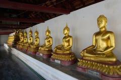 Buddha allineato Immagini Stock Libere da Diritti