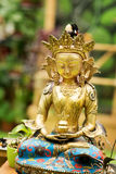Buddha Amitayus statue from Tibet. Buddhism, meditation Royalty Free Stock Photos