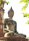 Buddha antigo em Ayuthaya, Tailândia Fotografia de Stock Royalty Free
