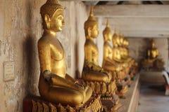 Buddha av Thailand Royaltyfri Bild