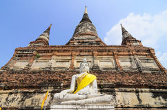 Buddha Ayuthaya, Tailandia Immagini Stock