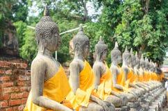 Buddha Ayuthaya, Tajlandia Obraz Stock