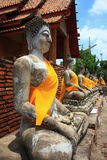 Buddha in ayuttaya  Thai Royalty Free Stock Photo