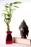 buddha bambusowy wizerunek Obrazy Stock