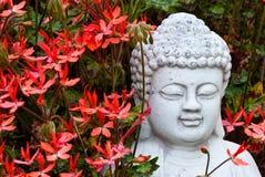 Buddha behind geraniums Stock Image