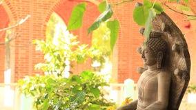 Buddha bello in Tailandia ogni giorno video d archivio