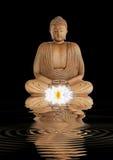 Buddha-Betrachtung stockfotografie