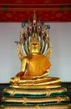 Buddha-Bild in der Kirche von Wat Pho Stockbild