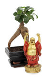 Buddha and bonsai Stock Photos